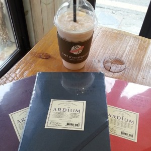 Ardium large space journals and strawberry yoghurt Schneecino in Hongdae