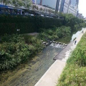Cheonggyecheon outside Dongmyo Station