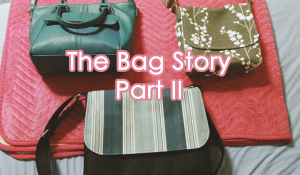 The Bag Story Part II
