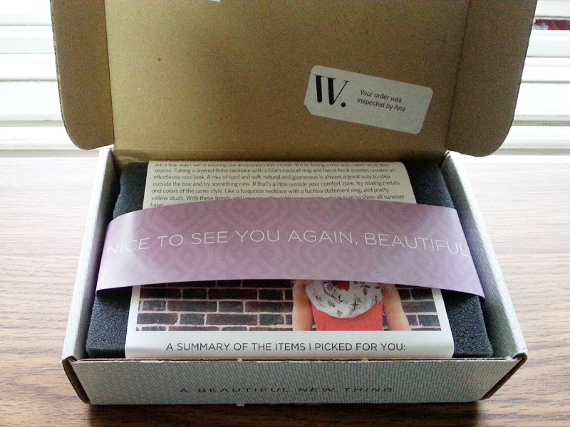 Wantable June 2015 Box