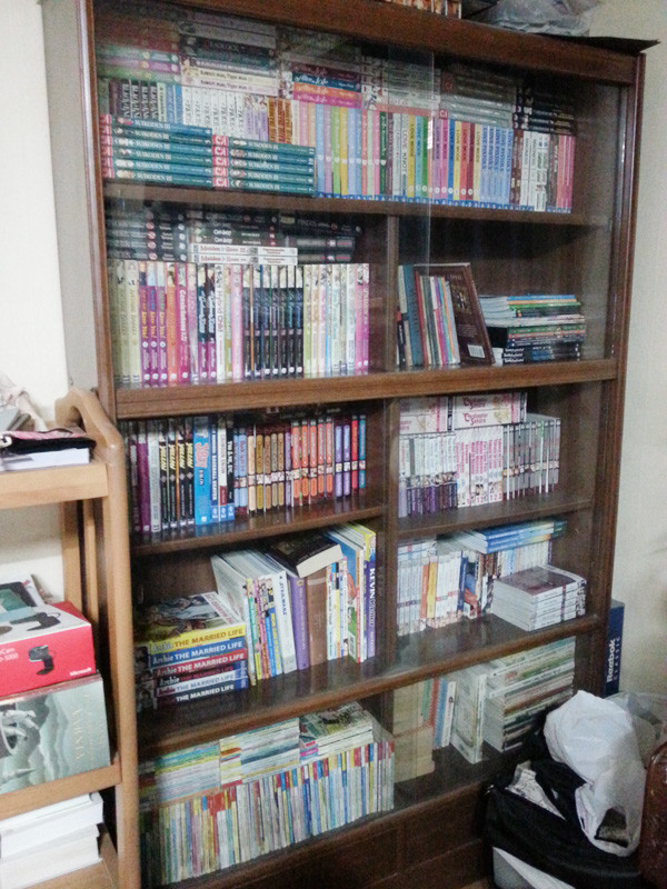Cleaner Bookcase