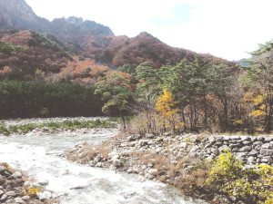 The Stream on the Way to Sinheungsa Temple