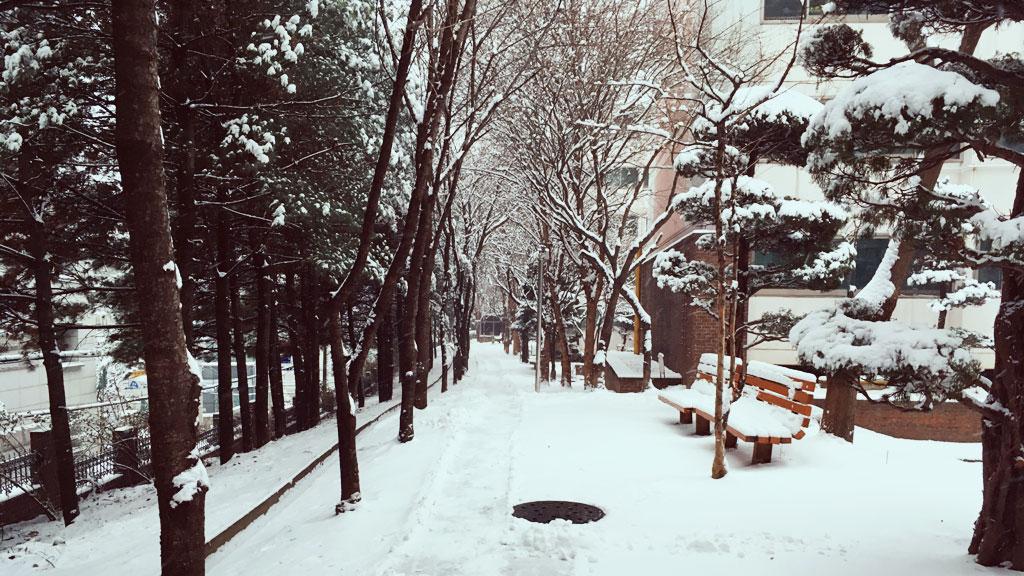 Snowy Seoul