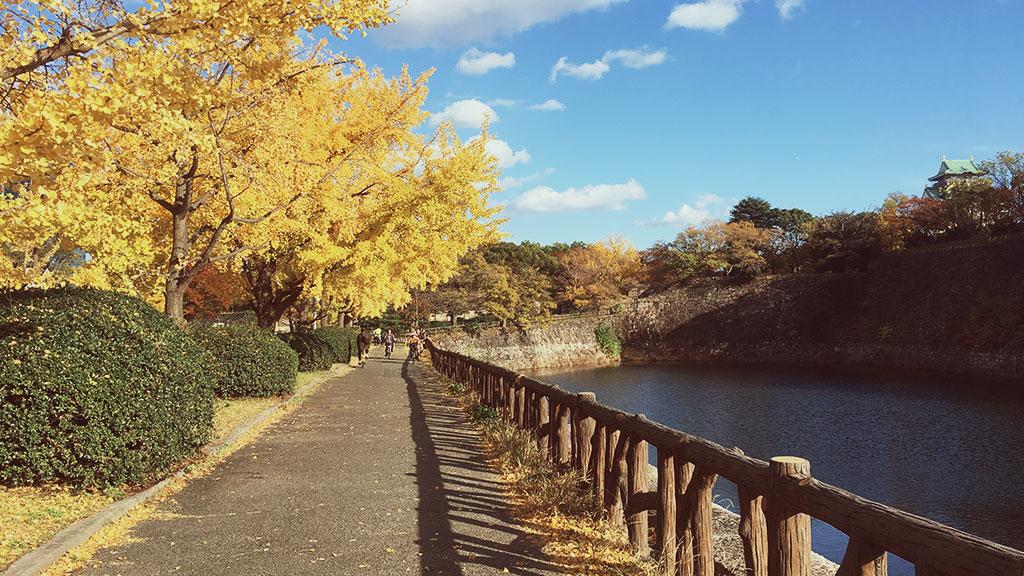 Osaka Castle's Pathway