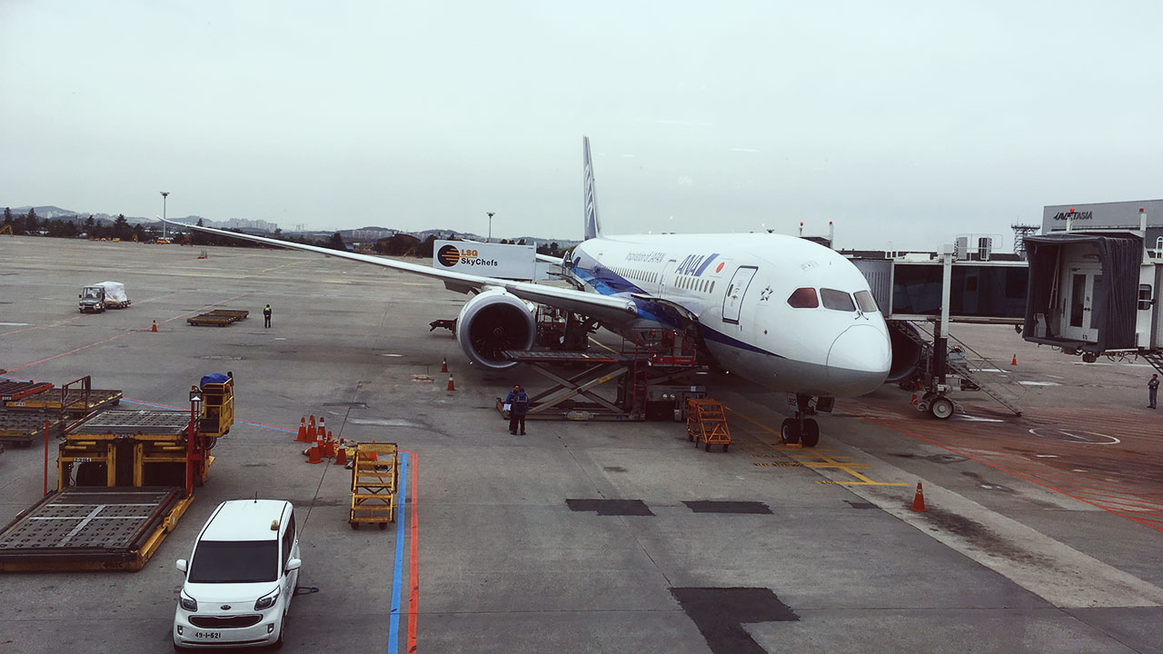 ANA Plane to Tokyo